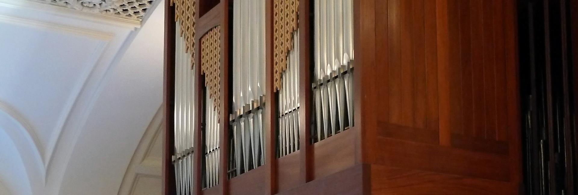 Organ uofa